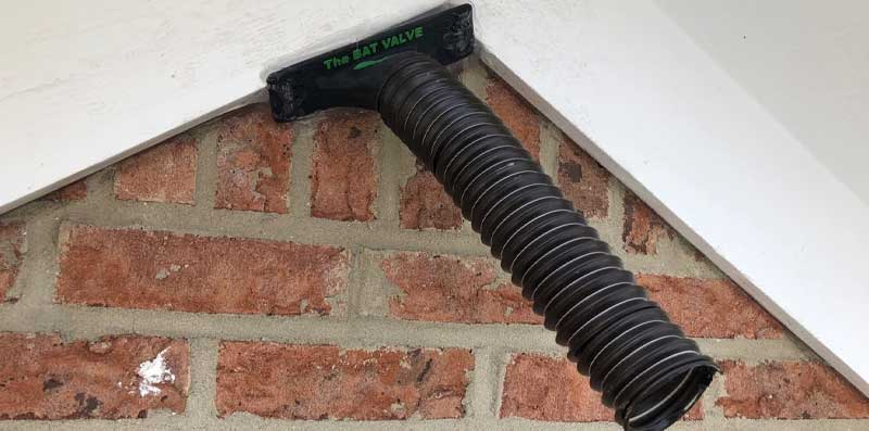 the bat valve TBV-FR4 at  Perrysburg Bat Removal