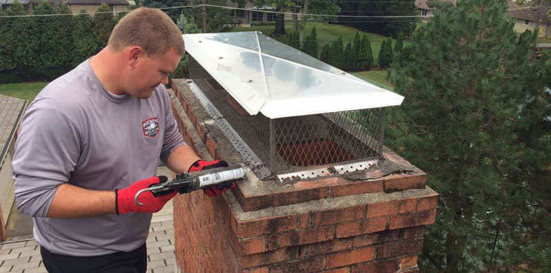 Bat Proofing Structures with chimney covers