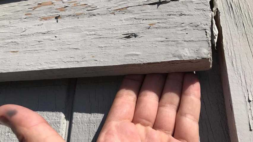 Fixing gaps in wood is an important Bat Removal And Exclusion process.