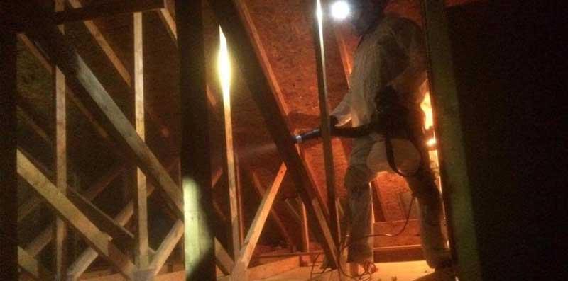 Attic sanitizing at Perrysburg Bat Removal