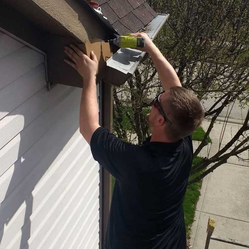 Flashing is used for Bat Removal And Exclusion