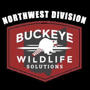 Bat Removal Findlay Ohio | #1 Bat Exclusion Service